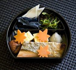 Japanese dish with 5 colors